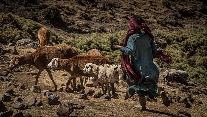 Zrób sobie przerwę od pracy - wybierz się jesienią na wakacje do Etiopii i poznaj uroki tego kraju